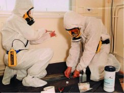 We have safely removed asbestos for over 20 years.