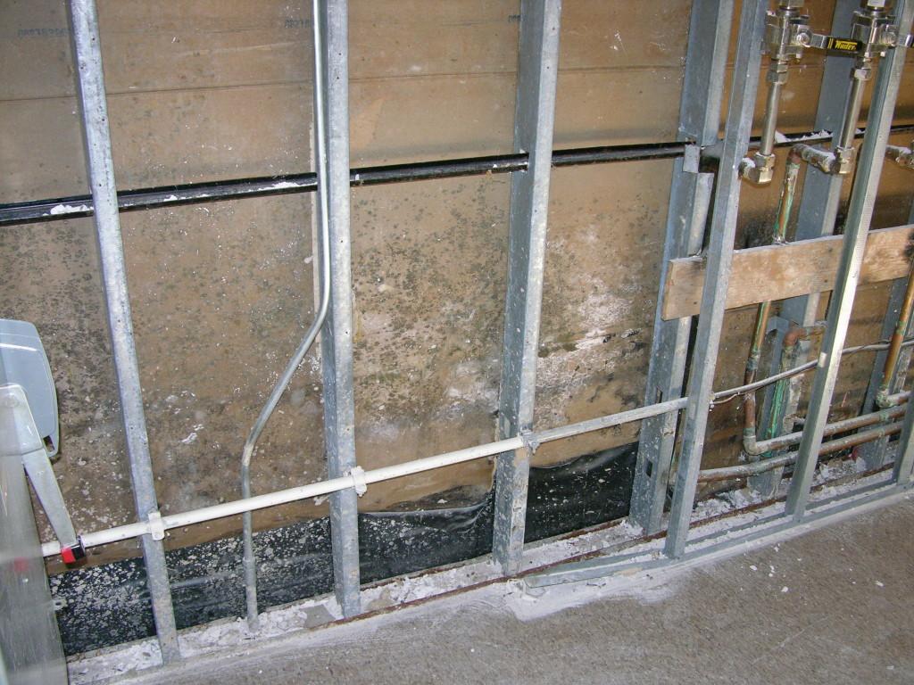 mold inside wall cavity found after Hurricane Katrina